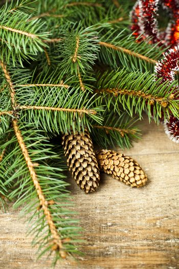 Christmas fir tree with pinecones.