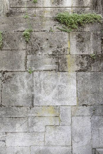 Wall with moss on urban street, construction
