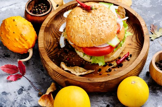Appetizing squash burgers