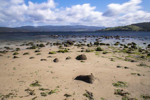 Dennes Point beach located on Bruny Island in Tasmania.