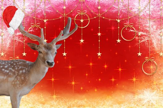 Merry christmas a reindeer with a santa claus hat on his antlers isolated on a beautiful decorated background