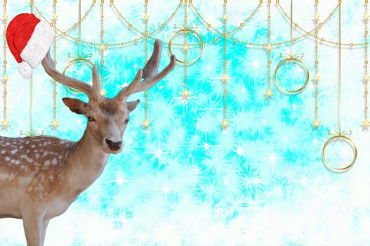 Merry christmas a reindeer with a santa claus bonnet on his antlers isolated on a beautiful blue background with stars and snow crystals
