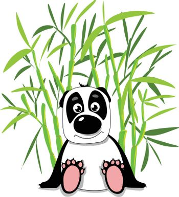 Stock Illustration Cute Panda in Bamboo Forest on a White Background