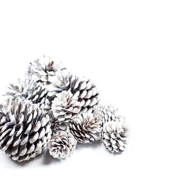 White decorative pine cones.