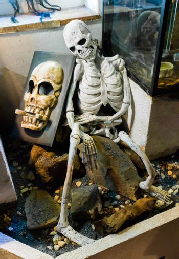 Halloween creepy human skeleton sitting on a stone rock with a spooky skull on a rock behind him