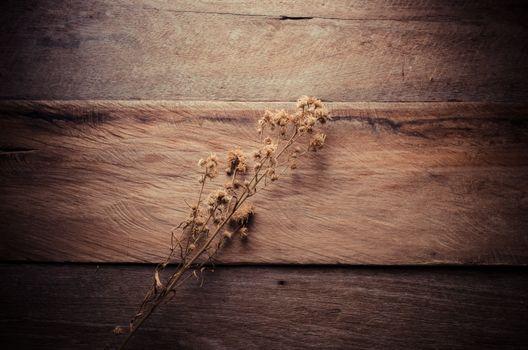 flower on wood table - tone vintage