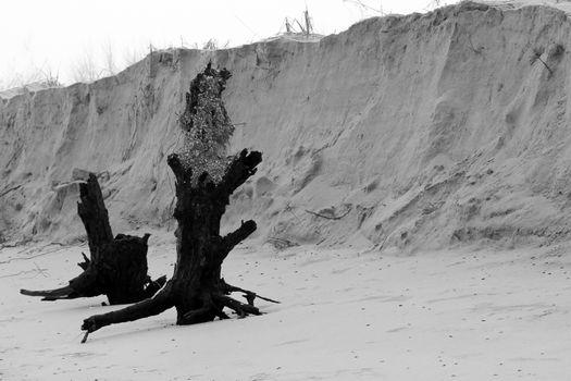 sandy coast after the storm. a photo