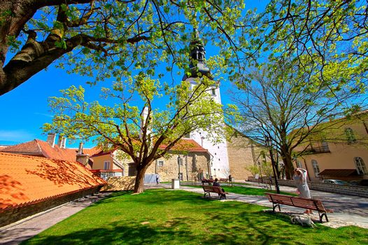 A beautiful summer view of Tallinn Old Town, Estonia. Park with green lawn and fresh leaves on trees surrounded with old historical architecture.