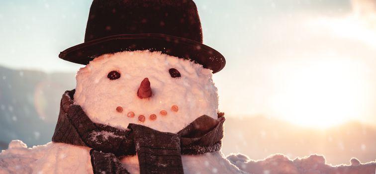 Pretty snowman portrait