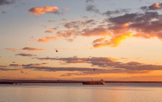 Cargo ships in Botany Bay at sunset