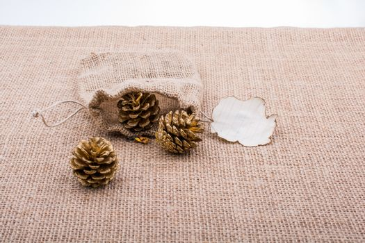 Pine cones out of sack and burnt paperon  canvas