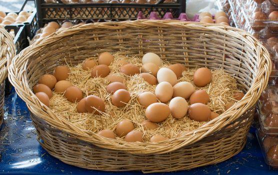 Organic fresh farm eggs in the straw basket