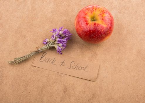 Back to school lettering with an apple and flower