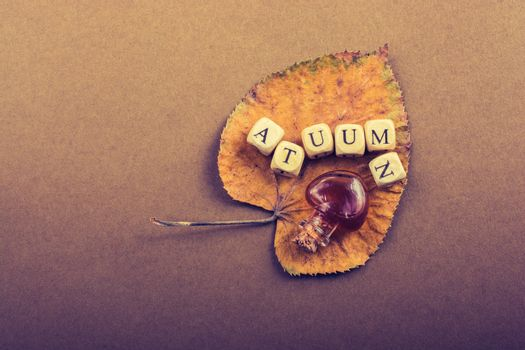 Autumn or  fall composition or concept and word Autumn