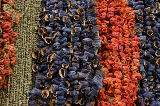 Dried peppers and aubergines and colourful spices in the Spice Market