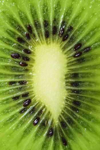 An extreme close-up shot of a freshly cut green kiwi slice.