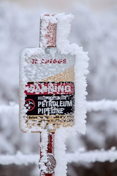 Winter Frost Saskatchewan
