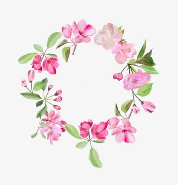 Watercolor beauty wreath with blossom pink cherry and apple tree flowers illustration
