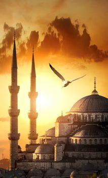 Blue mosque at sunrise