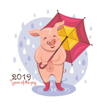 2019 New Year greeting card with a cute pig walking in the rain. Vector illustration.
