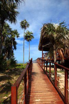 Wooden walkway leading to the beach. Cuba, Varadero Beach