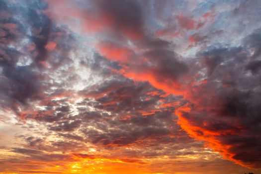 Scenery in the sunrise