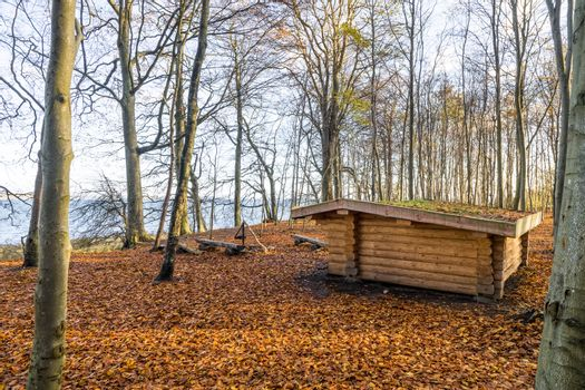 Shelter made of wood in a forest