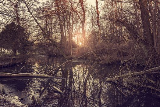 Sunrise by a forest lake in the winter with barenaked trees and cold weather