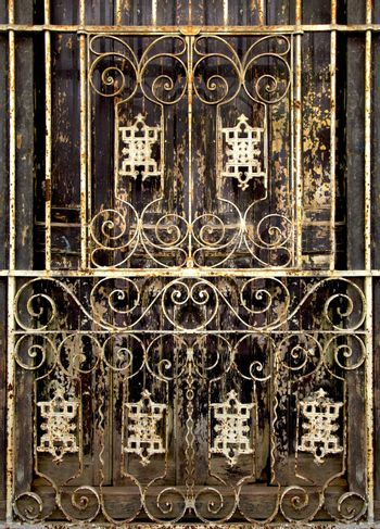 Beautiful forged grille on the door