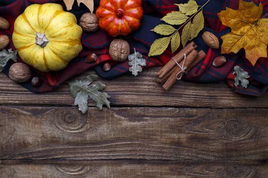 Autumn halloween or thanksgiving backgrouund