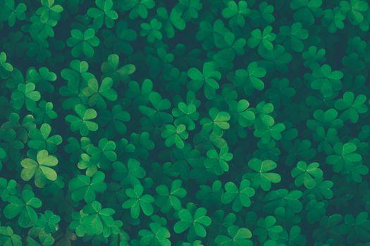 Lucky clover vintage background