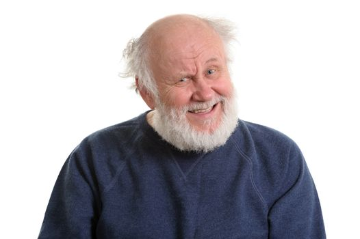 portrait of bald and bearded sarcasticly laughing senior man, isolated on white