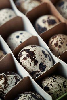 Carton box with quail eggs