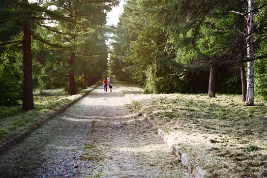 Two women walking in public park