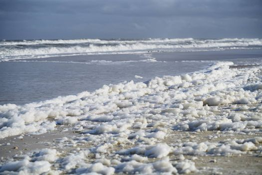 Sea foam on the coast at Pacific Ocean