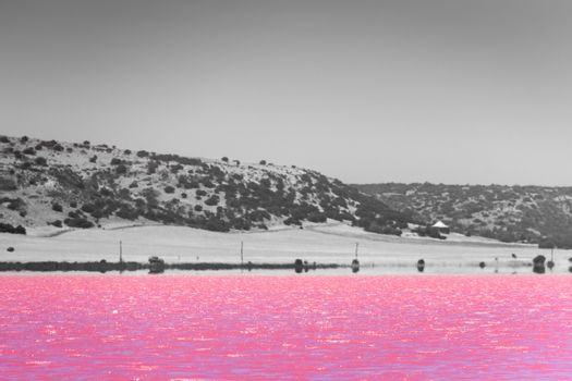 Black, White and accent color of Pink lake next to Gregory in Western Australia in front of desert