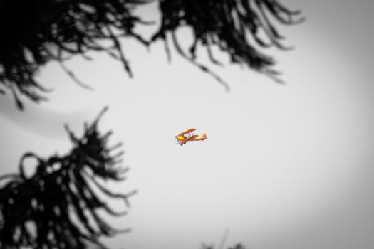 Yellow double decker biplane flying over Perth seen from Stirling Gardens in black and white with yellow accent color