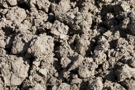 Dirt background texture. Soil prepared for cultivation.