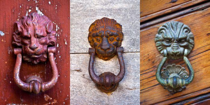 Lion shaped door knockers