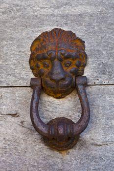 Ancient lion shaped door knocker