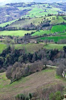 Green spring lush countryside