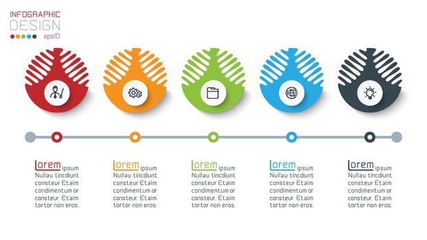 Five harmonious circle infographics.