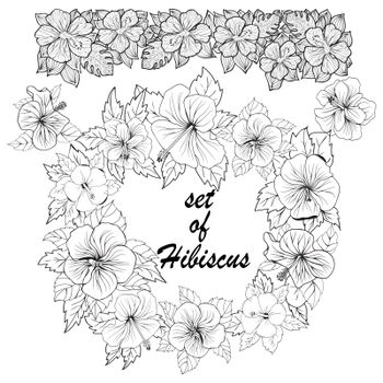 Set of hibiscus Exotic tropic botany leaves and flowers sketch.