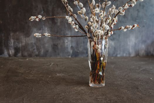 vase with willow flowers cats on a dark vintage background with