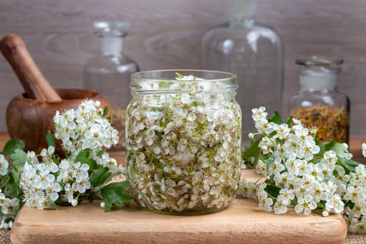 A jar filled with fresh hawthorn flowers and alcohol, to prepare