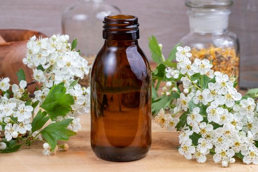A bottle of tincture with blooming hawthorn branches