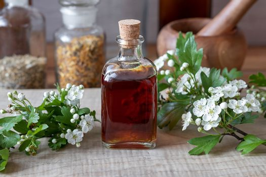 A bottle of hawthorn tincture with fresh blooming hawthorn branc