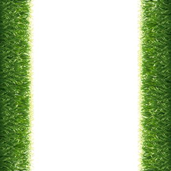 Grass Borders White Background