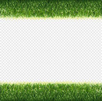 Green Grass Borders Transparent Background