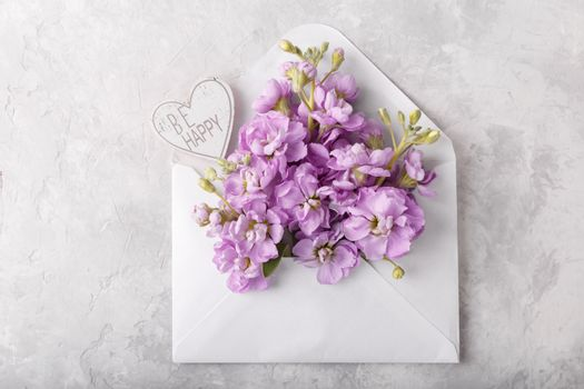 Lilac matthiola flowers in envelope